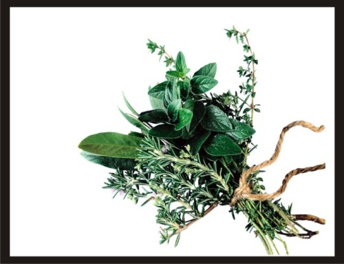 frt herb
