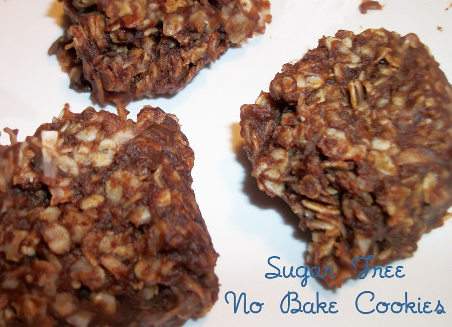 Fudgy Chocolate Oatmeal No Bake Cookies (sugar free) | Heart of a ...