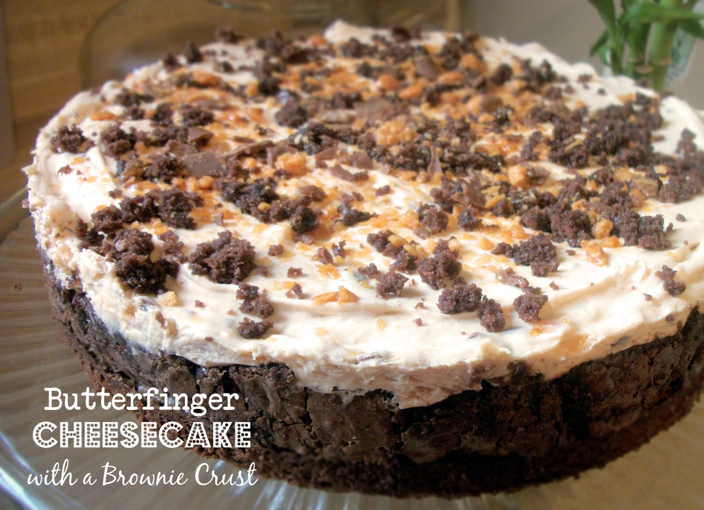 Brownie Crusted Butterfinger Cheesecake | Heart of a Country Home